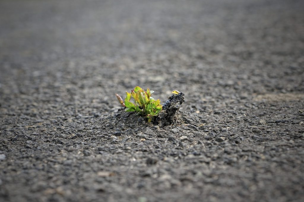 When Breakdowns Become Breakthroughs In Performance