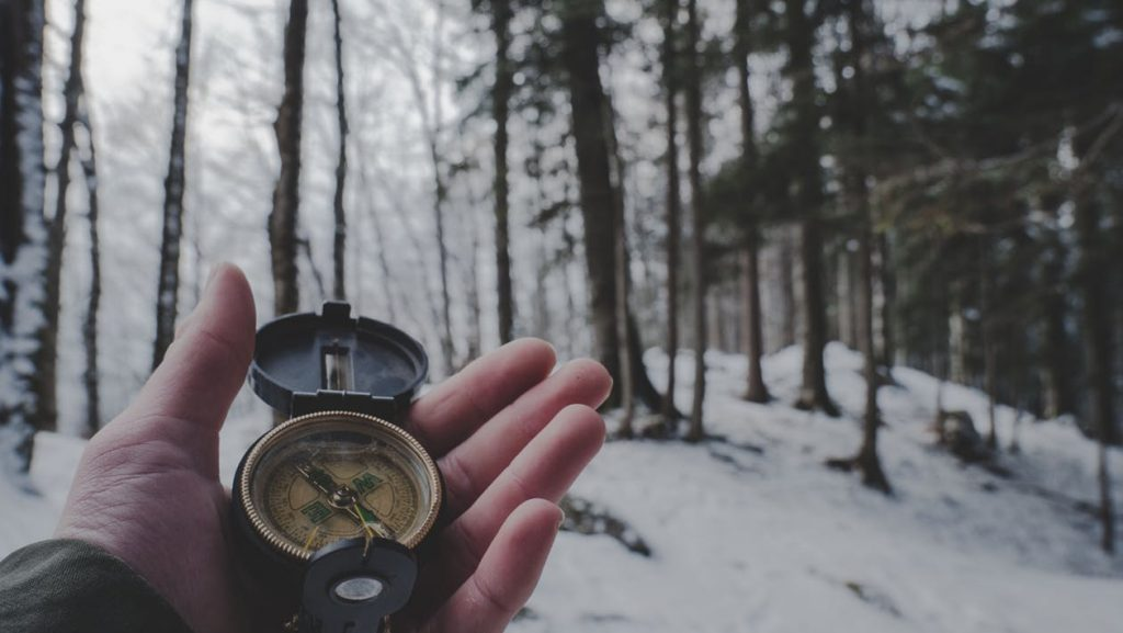 Trust Your Compass